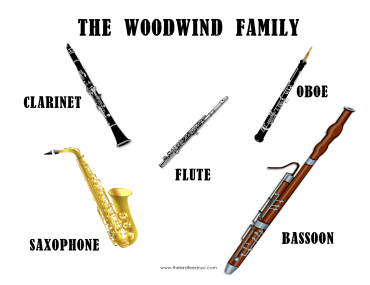 The-Woodwind-Family-The-Bird-Feed